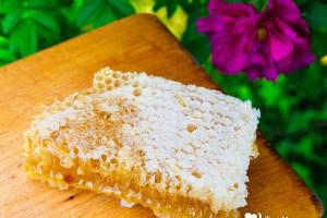 Чем полезны медовые соты?