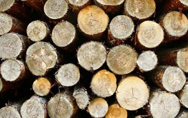 ЕС заявил о согласии Украины вновь вывозить лес