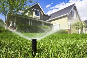 Автоматический полив сада: стоит ли решиться?