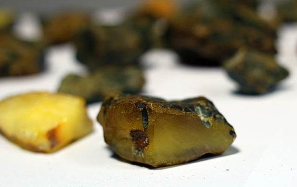 В Житомирской области будут легально добывать янтарь