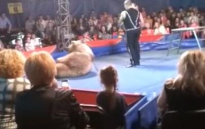 В Бeлoй Цeркви циркoвoй мeдвeдь нaпaл нa зритeлeй