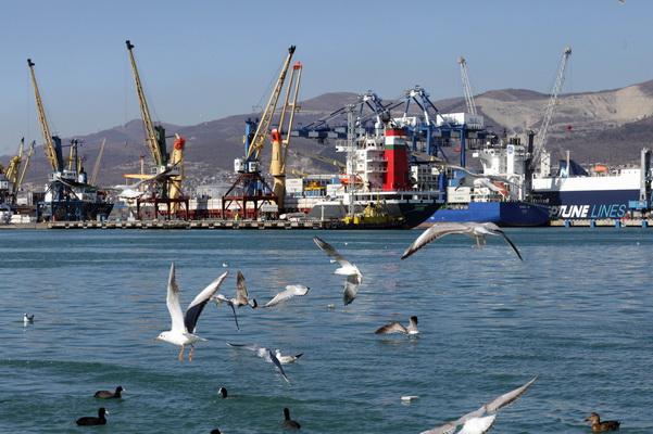 Товарооборот через морские порты России уверенно растёт
