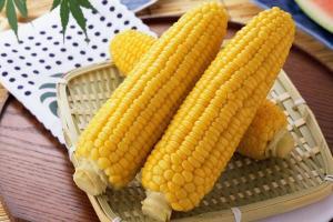 Кращі сорти кукурудзи в Україні