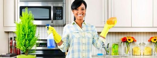 Незаменимые услуги по уходу за домом