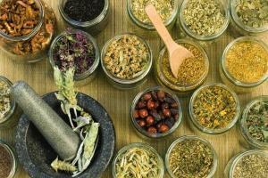 Фитотерапия — что можно лечить с помощью трав