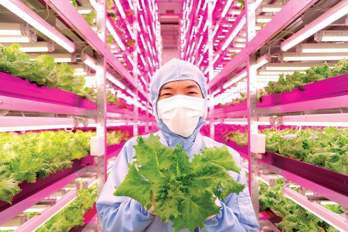 Шесть технологий, которые изменят будущее еды