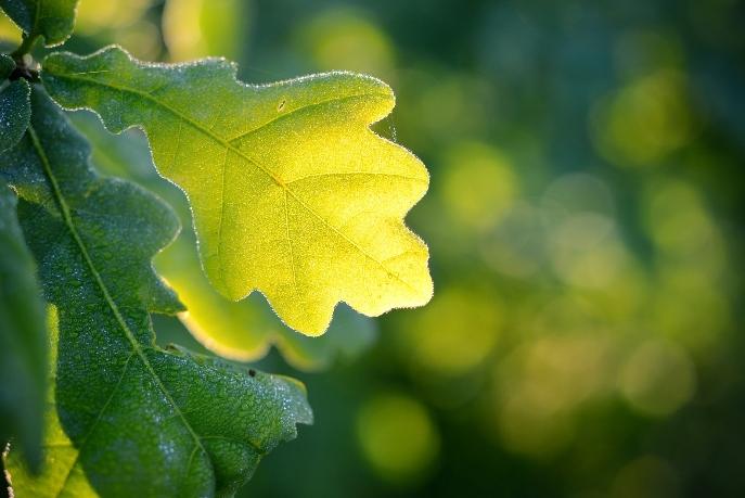 Шесть технологий для источников питания нового поколения