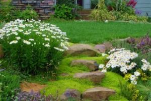 Устойчивый ландшафт: красивая гармония без дополнительных затрат
