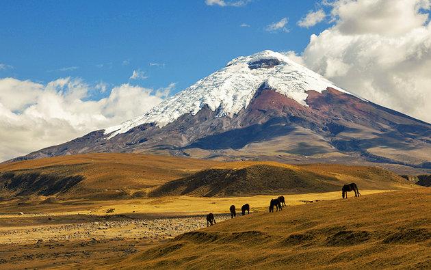 Национальные парки эквадора