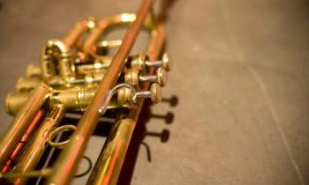 Как выбрать духовой инструмент