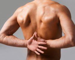 Состояние позвоночника и здоровье организма