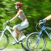Где найти лучшие модели велосипедов для всей семьи?