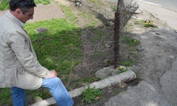 В городе на Волыни нашли бордюр из еврейских надгробий