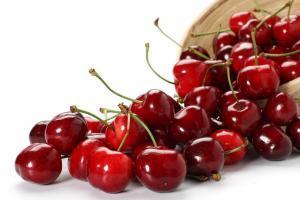 Самые популярные сорта вишни в Украине