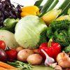 Как выбрать и где купить качественные семена овощных и цветочных культур
