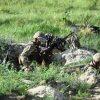 На Донбассе погибли два бойца сил ООС