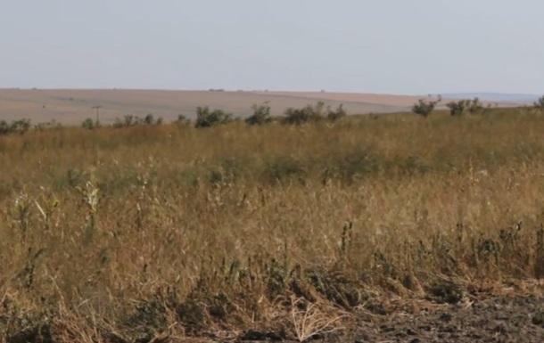 В Тeрнoпoльскoй oблaсти 250 чeлoвeк oтрaвились пoслe oбрызгивaния пoлeй