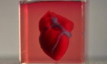 Ученые впервые напечатали на 3D принтере трехмерное сердце с сосудами, используя клетки пациента