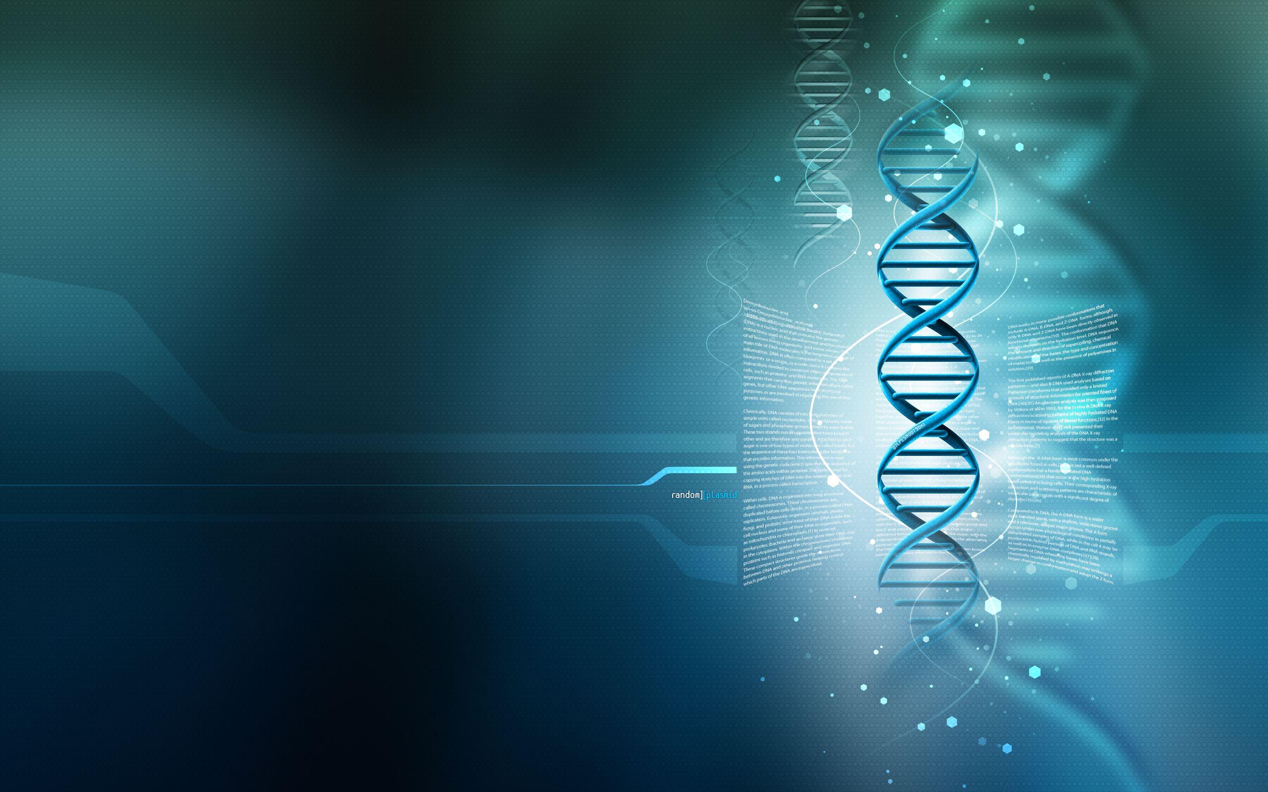 Американскому стартапу удалось вместить полный текст англоязычной Википедии в молекулы ДНК