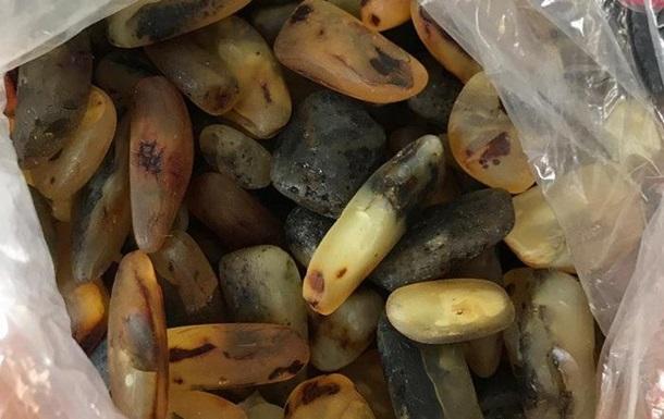 СБУ изъяла более 40 кг янтаря на Закарпатье