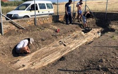 Археологи нашли в Греции дерево возрастом 20 миллионов лет