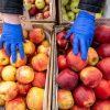 Яблоки в Украине взлетели в цене