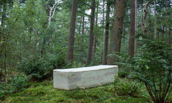 Заполненный мхом «живой» гроб значительно ускоряет процесс разложения погребенного человеческого тела
