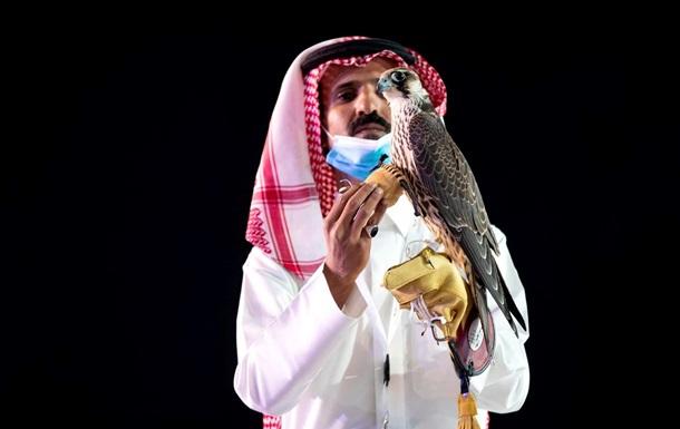 В Саудовской Аравии сокола продали за рекордные $173 тысячи