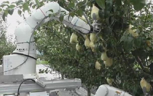 В Японии создали робота-фермера