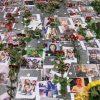 Катастрофа МАУ: пострадавшие страны сделали заявление