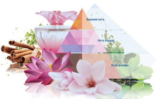 Ноты аромата в парфюмерии