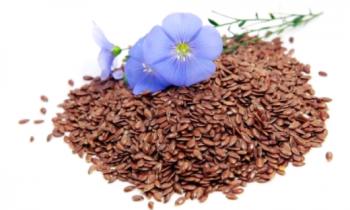Особенности семян льна и их применение