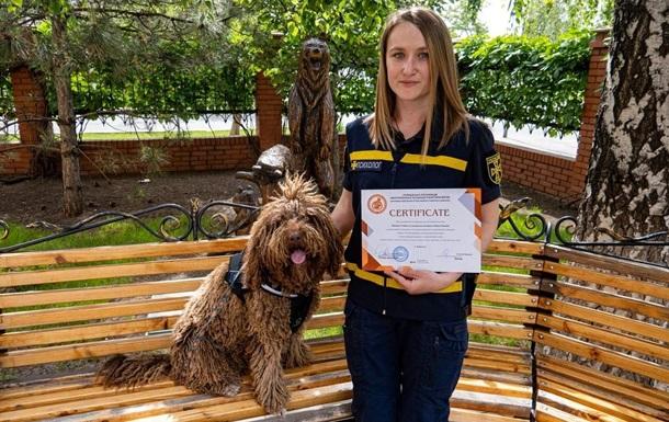 На Донбассе собака ГСЧС получила диплом терапевта