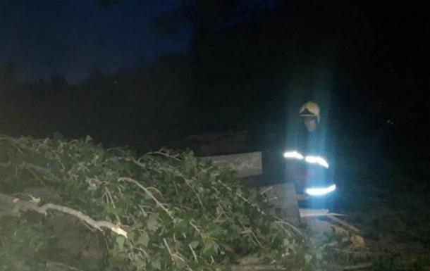 В Виннице ураган валил деревья, пострадала женщина